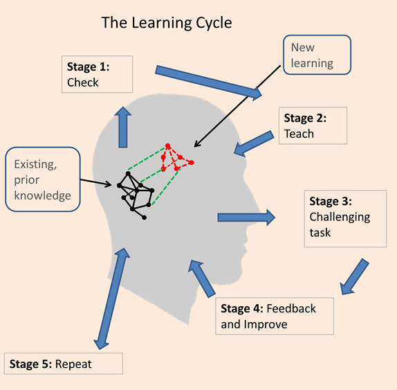 learning-cycle-s-2015