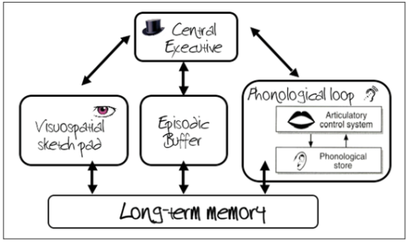 wmm-diagram